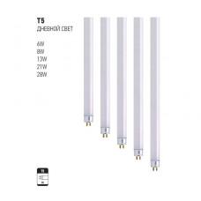 T5 дневной свет